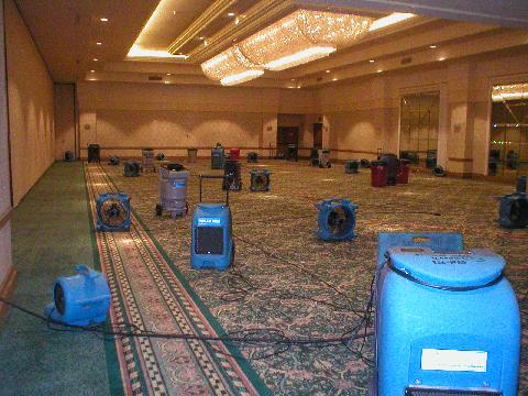 WET CARPET WATER DAMAGE CLEANUP SERVICE
