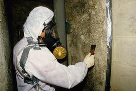 ASBESTOS DAMAGE CLEANUP SERVICE